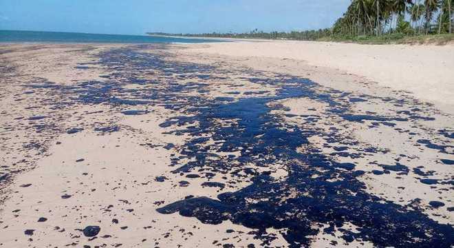 900 toneladas de resíduos foram recolhidos das praias