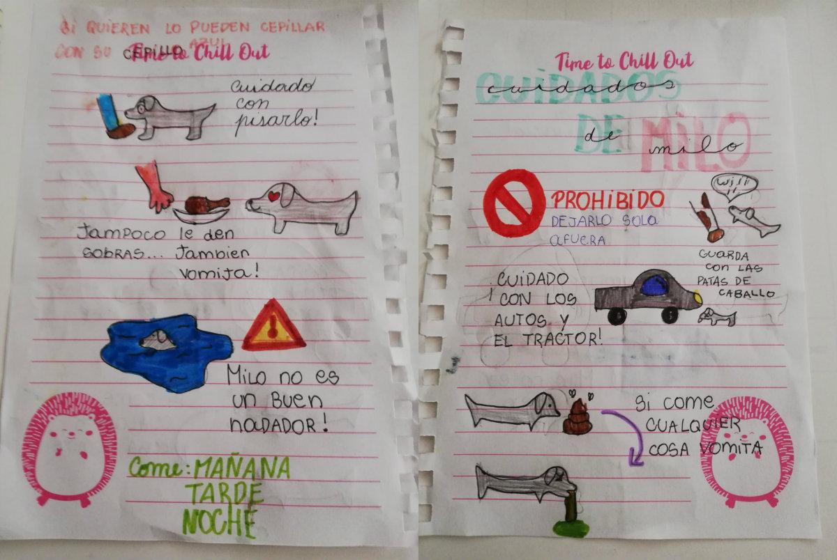 Criança escreve manual para cuidar do cachorro