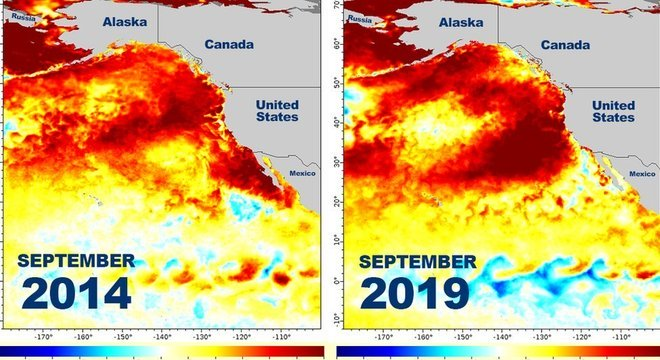 Este gráfico mostra como zonas de mar quente foram produzidas nos EUA em setembro de 2014 e no mesmo mês de 2019