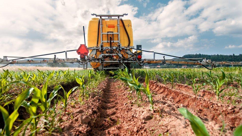 O agronegócio corresponde a mais de 20% do PIB brasileiro