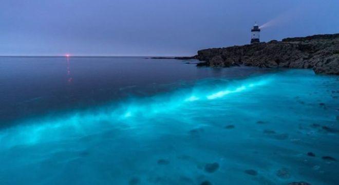 Fotógrafos e amantes da natureza têm observado plânctons bioluminescentes na costa do País de Gales