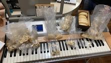 Polícia Federal faz operação contra comércio ilegal de marfim em SP