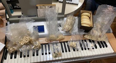 Marfim seria vendido ilegalmente em São Paulo