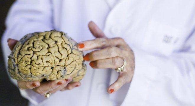 Diamond é considerada uma das fundadoras da neurociência moderna