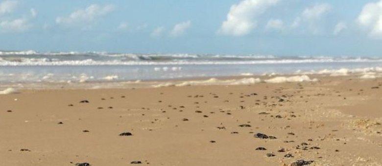Vazamento de petróleo no litoral do NE não é responsabilidade da Petrobras