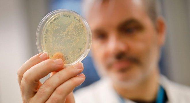 Vários laboratórios credenciados no mundo estão trabalhando no projeto de uma vacina