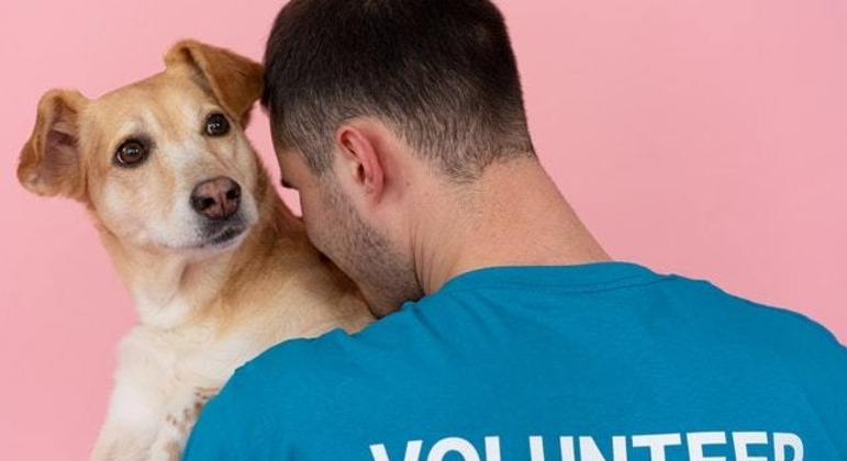 Evento em mercado incentiva adoção de cães e gatos