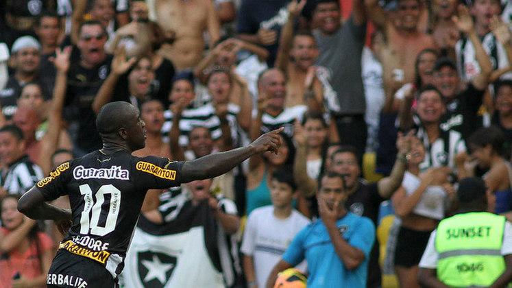 Mesmo sem o Engenhão, o time do Botafogo deu conta do recado. Jogando no Maracanã, o Alvinegro terminou na quarta colocação no Campeonato Brasileiro de 2013 e garantiu uma vaga na Taça Libertadores, competição que não disputava desde 1996.