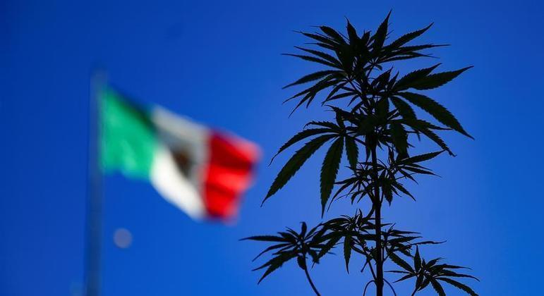 País é o terceiro das Américas a legalizar o consumo, depois de Uruguai e Canadá