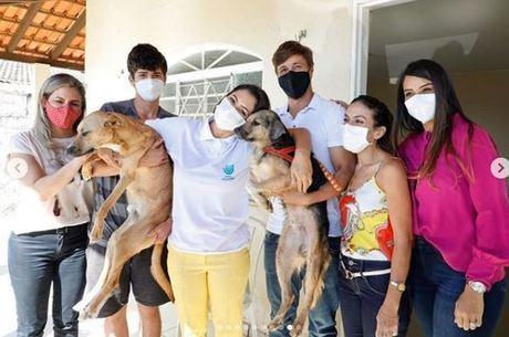 Michelle Bolsonaro adota dois cachorros