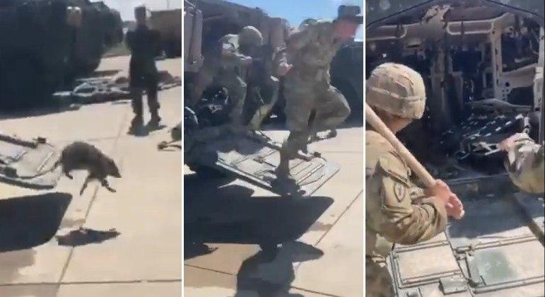 Vídeo mostra militares dos EUA sendo perseguidos por guaxinim invasor de blindado