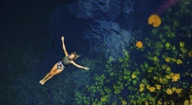 Objetivo do Wonderland Project é fazer com que qualquer pessoa possa nadar e mergulhar em cenotes sem sair de casa, por meio da realidade virtual