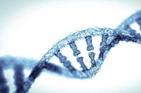 Pesquisa com quase 50 mil pessoas é a primeira a determinar componente genético da empatia, mas tem limitações