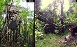 Em 2013, os dois foram descobertos por moradores locais, vivendo em uma casa na árvore.Desde então, foram lentamente conhecendo a civilização, e moram em um vilarejo, mas ainda próximos da selva que chamam de lar