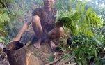 Desde 1972, Ho foi criado na floresta remota pelo próprio pai,Ho Van Thanh, que fugiu da guerra que assolou o país por quase 20 anos. A gota d'água foi uma bomba que matou a esposa dele, lançada por tropas americanas.Ho Van Lang tinha dois anos na épocaLEIA MAIS:Pedestres param trânsito e ajudam família de patos em ida à loja