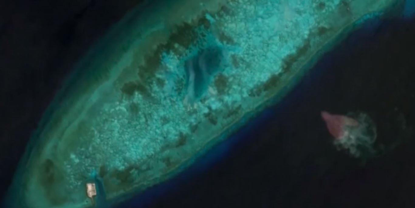 Uau Monstros Marinhos Gigantes São Registrados Pelo Google Earth