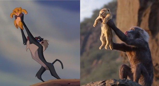 """Montagem mostra as cenas da animação e do filme """"Rei Leão"""", da Disney"""