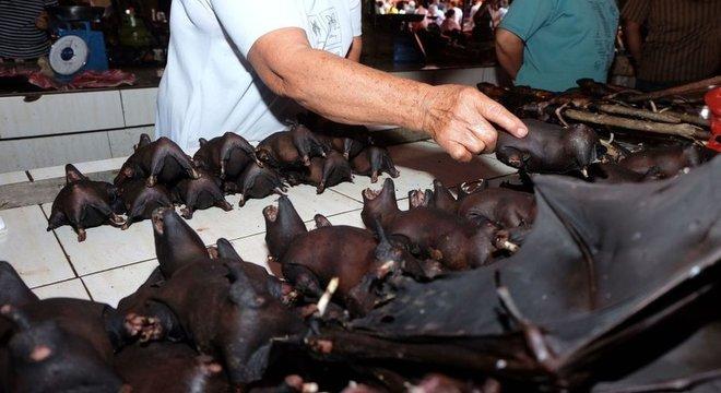 Morcegos são vendidos em mercado indonésio