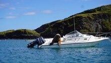 Morsa turista toma lancha luxuosa 4.000 km longe do habitat dela