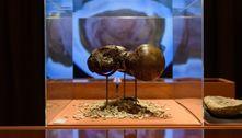 Exposição na Fiesp em SP apresenta o mundo de Charles Darwin