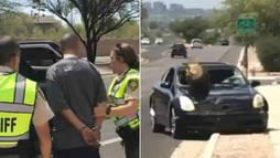 Motorista é preso ao ser flagrado com cacto atravessado no para-brisa (Montagem/R7)