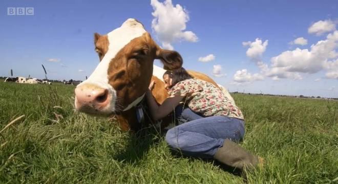 Algumas pessoas passam até três horas fazendo carinho nos animais