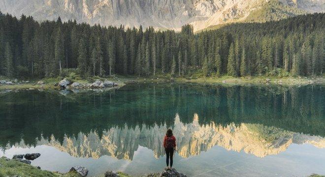 Florestas cobrem hoje uma área 10% maior do que antes da Revolução Industrial na Europa