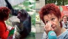 Polêmica: mulher é proibida de visitar chimpanzé em zoológico