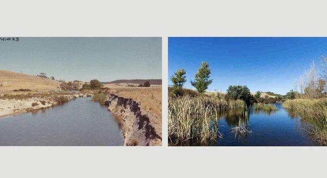O antes e o depois da adoção da agricultura de sequência natural na região de Mulloon Creek