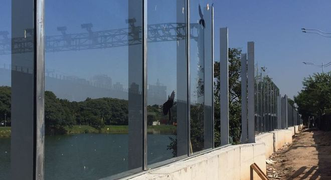 Homem teria furtado uma das colunas que sustentam os vidros