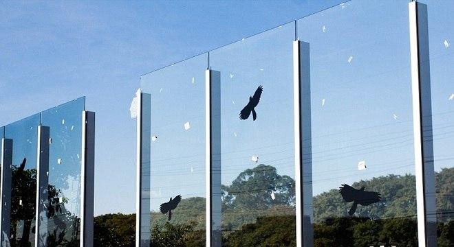 Muro de vidro da USP amanhece quebrado novamente
