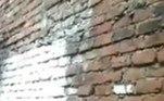 No entanto, enquanto todos dormiam, os animais se empoleiraram no muro, que pertencia à propriedade de um vizinhoVale o clique:Jovem de 17 anos quebra recorde com pernas gigantes de 1,35 m