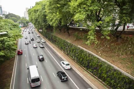 Árvores serão plantadas na Avenida 23 de Maio