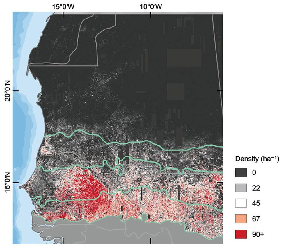 Neste mapa, é possível ver o número de árvores por hectare na área estudada