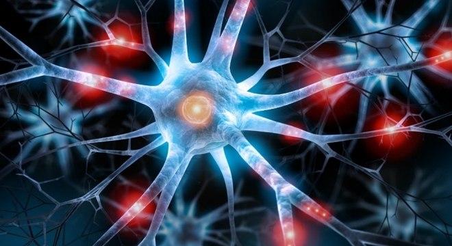 Neurônio, o que é? Definição, estrutura, função e os principais tipos
