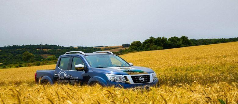 Frontier LE, a versão mais cara e completa da pickup Nissan em um campo de trigo