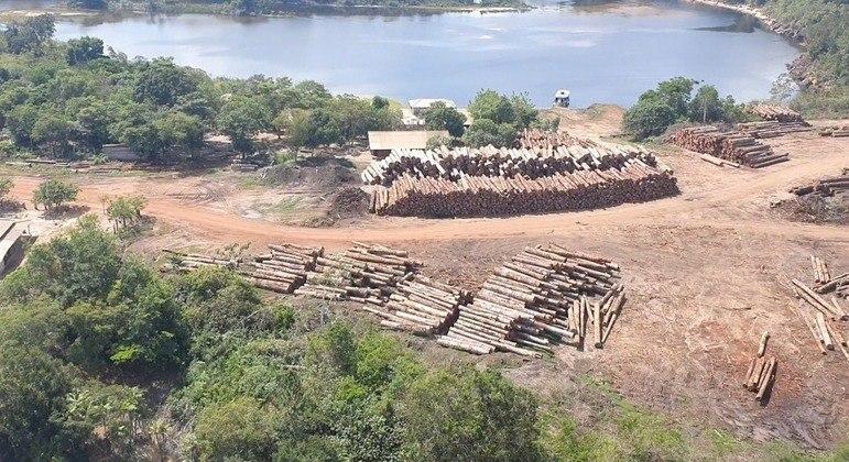 No Pará, PF faz a maior apreensão de madeira nativa da história