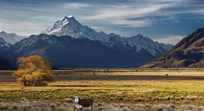 A Nova Zelândia está entre os principais emissores de carbono per capita principalmente devido a suas emissões de metano devido à grande indústria de gado e ovelha