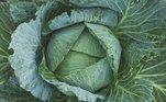 Adicionar folhas verdes no jantar, como espinafre e couve, pode ser umagrande vantagem. Elas são ricas em magnésio e potássio, ambos nutrientes quecontribuem bastante. Salmão e atum também têm propriedades que podem melhorar a qualidade do sono