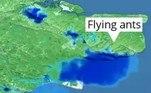 De acordo com o jornal britânico The Guardian,um porta-voz do serviço meteorológico disse que provavelmente havia