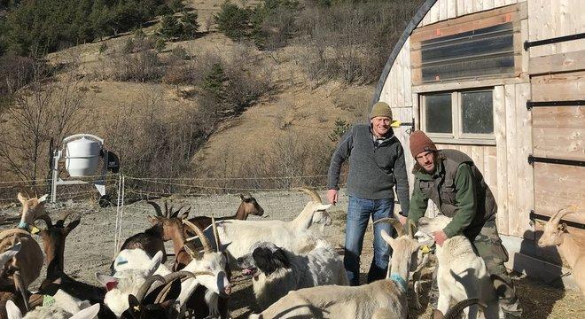 O fazendeiro Simon Merveille viu uma de suas cabras ser comida por lobos