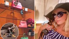 Paris Hilton gasta fortuna em presente para mini chihuahua!
