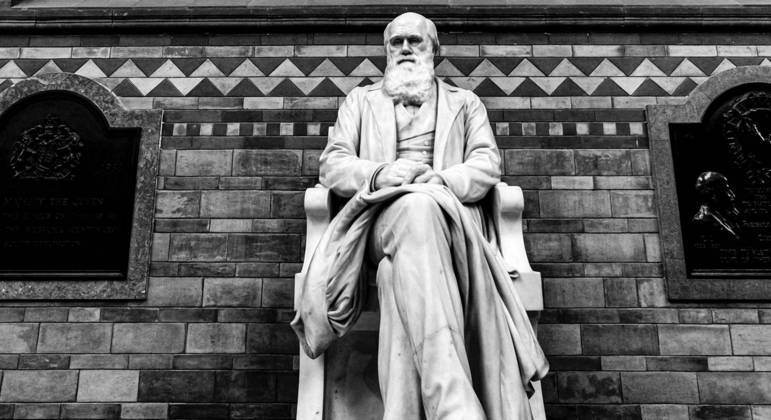 O que é Antropologia? História, método e classificações