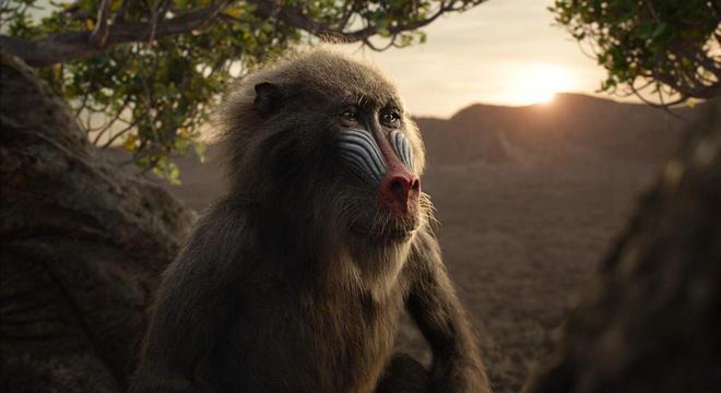 Rafiki segue como guia para retorno de Simba