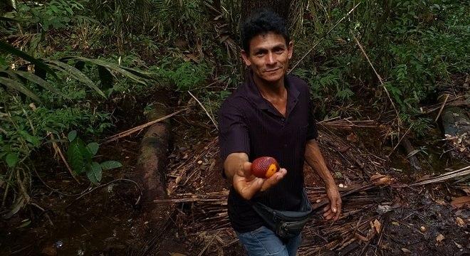 O ribeirinho José Camilo da Silva mostra um buriti, numa das trilhas abertas para uma pousada