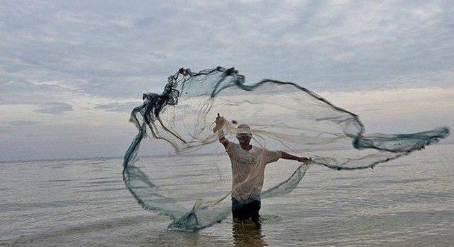 Pesquisadores monitoram o impacto de desastre ambiental no pescado do NE