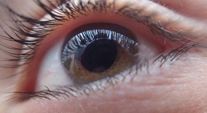 A degeneração macular afeta o centro da retina, e leva à perda da visão central