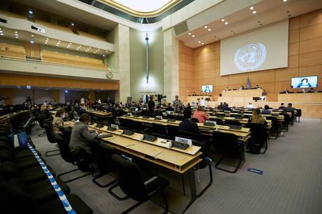Documento será apresentado na ONU hoje