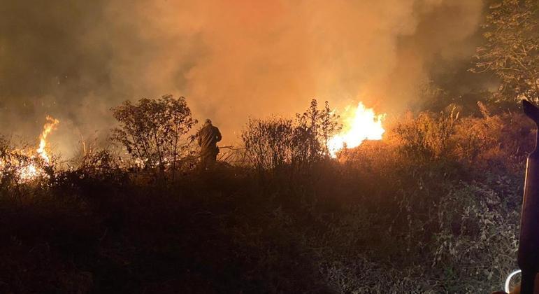 Bombeiros atuam no combate a incêndio na região da Nhecolândia: fogo já atingiu animais