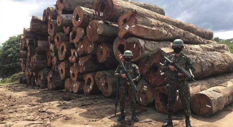 Militares durante apreensão de madeira ilegal na Amazônia: Forças Armadas vão atuar no combate ao desmatamento